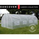 Dancover Polytunnel Drivhus 3x6x2m, 18m², Transparent