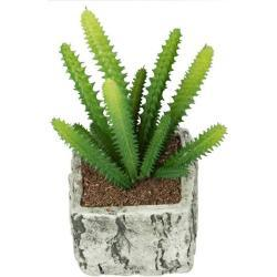 Kunstig kaktus - I pæn sten skjuler - Højde på 19 cm - Flot kunstig kaktus